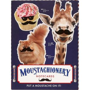 Paper Source Moustachionery