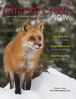 Holiday Issue 2015
